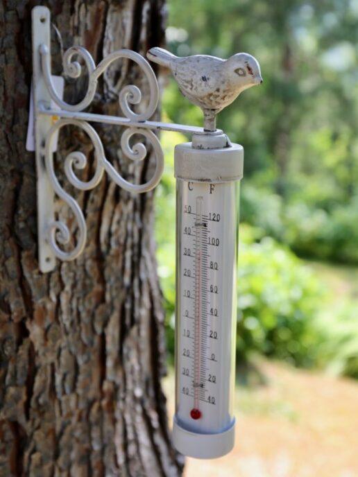 termometro da esterno uccellino